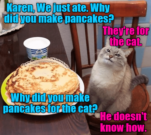Cat - Karen, We just ate. Why didyou make pancakes? They're for the cat Whydidyoumake pancakes forthe ca Hedoesn't know how