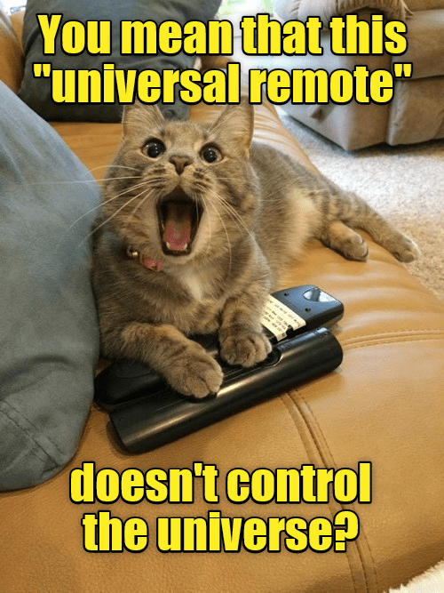 "Cat - You mean that this ""universal remote"" doesn't control the universe?"