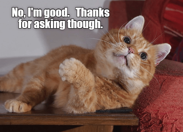 Cat - No, I'm good. Thanks for asking though.