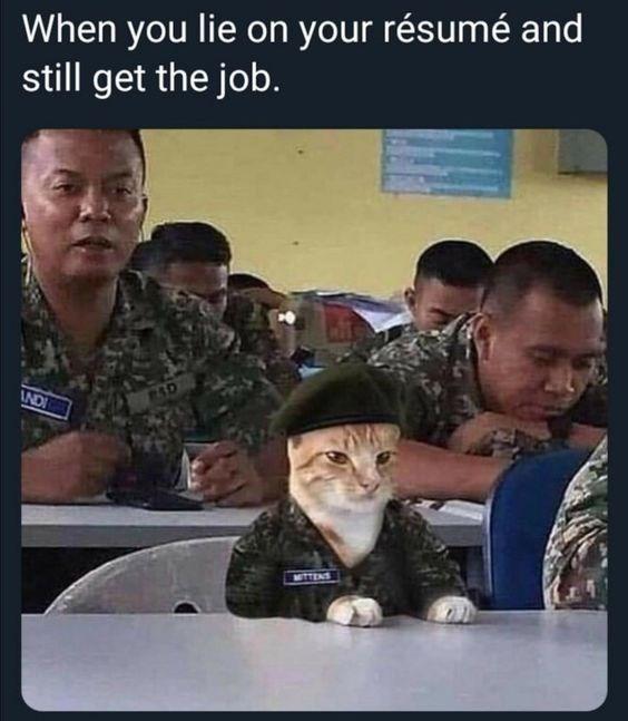 Photo caption - When you lie on your résumé and still get the job. ND TTENS