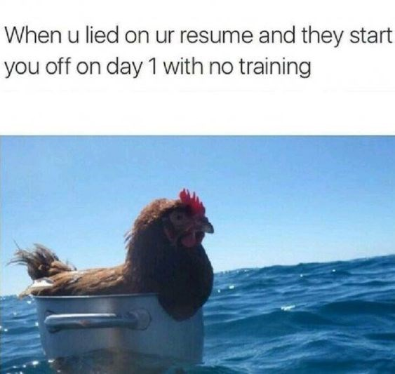 Chicken - When u lied on ur resume and they start you off on day 1 with no training