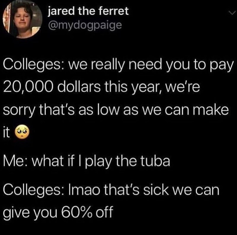 Text - jared the ferret @mydogpaige Colleges: we really need you to pay 20,000 dollars this year, we're sorry that's as low as we can make it Me: what if I play the tuba Colleges: Imao that's sick we can give you 60% off