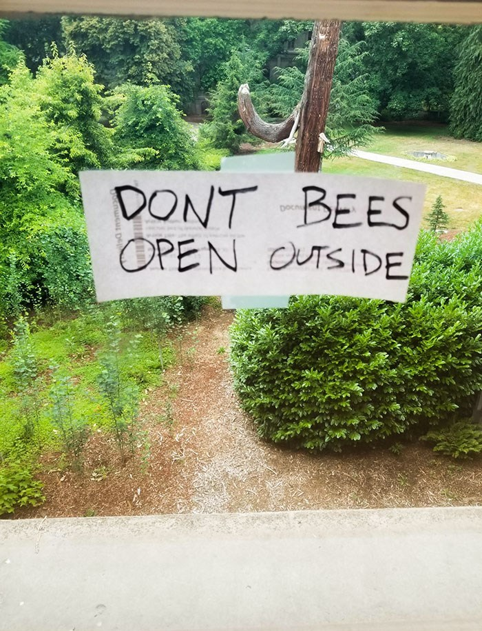 Nature - DONT BEES OPEN OUTSIDE Docn