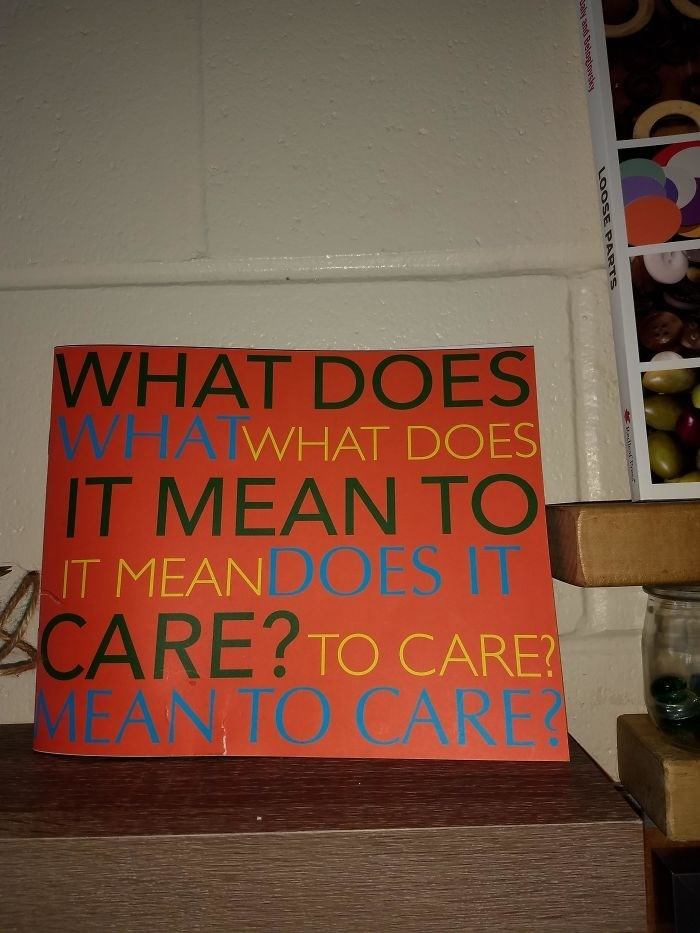 Text - WHAT DOES WHATWHAT DOES IT MEAN TO IT MEANDOES IT CARE?TO CARE? MEAN TO CARE ray andd Beloaoedes LOOSE PARTS