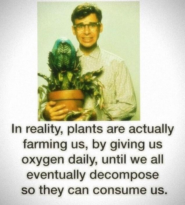 Text - In reality, plants are actually farming us, by giving us oxygen daily, until we all eventually decompose so they can consume us.