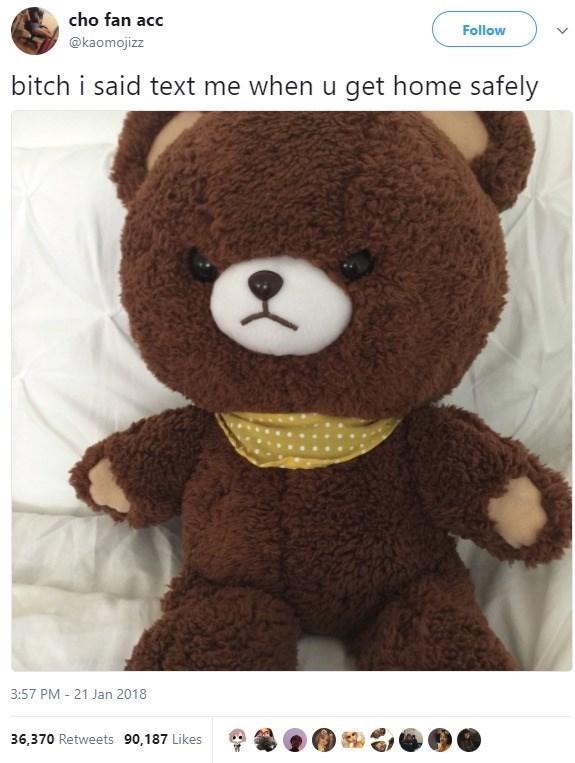 Stuffed toy - cho fan acc Follow @kaomojizz bitch i said text me when u get home safely 3:57 PM 21 Jan 2018 36,370 Retweets 90,187 Likes