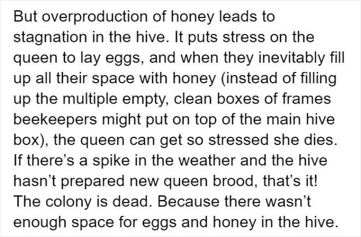 Text - But overproduction of honey leads to stagnation in the hive. It puts stress on the queen to lay eggs, and when they inevitably fill up all their space with honey (instead of filling up the multiple empty, clean boxes of frames beekeepers might put on top of the main hive box), the queen can get so stressed she dies If there's a spike in the weather and the hive hasn't prepared new queen brood, that's it! The colony is dead. Because there wasn't enough space for eggs and honey in the hive.