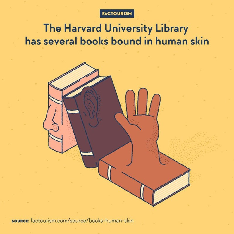 Line - FACTOURISM The Harvard University Library has several books bound in human skin SOURCE: factourism.com/source/books-human-skin
