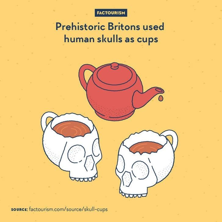 Text - FACTOURISM Prehistoric Britons used human skulls as cups SOURCE: factourism.com/source/skull-cups
