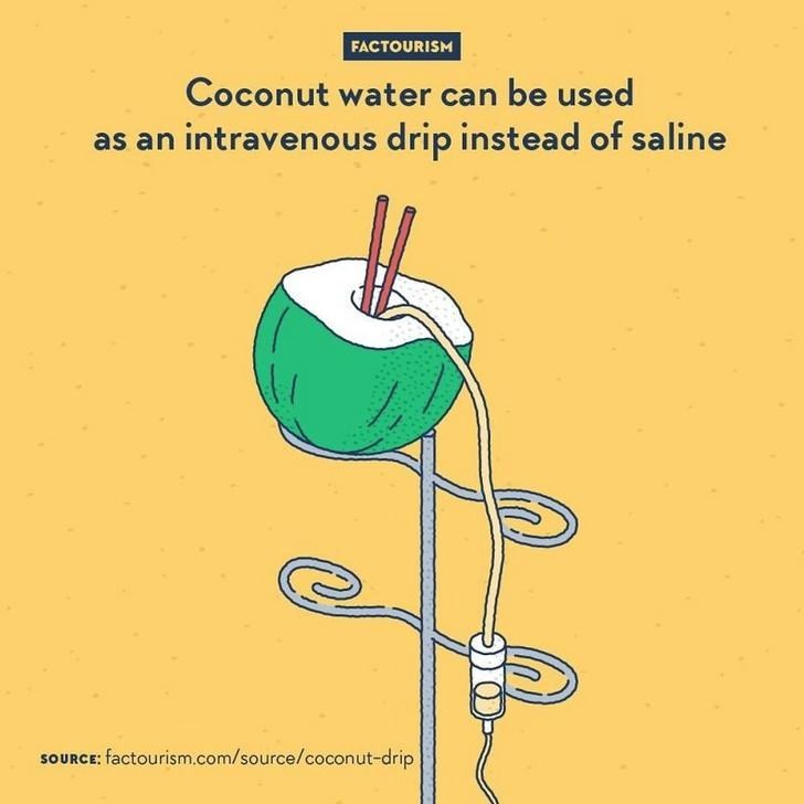 Line - FACTOURISM Coconut water can be used as an intravenous drip instead of saline SOURCE: factourism.com/source/coconut-drip