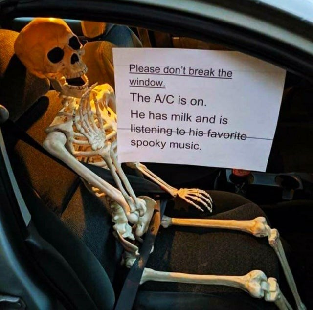 Auto part - Please don't break the window The A/C is on. He has milk and is listening to his-favorite spooky music.