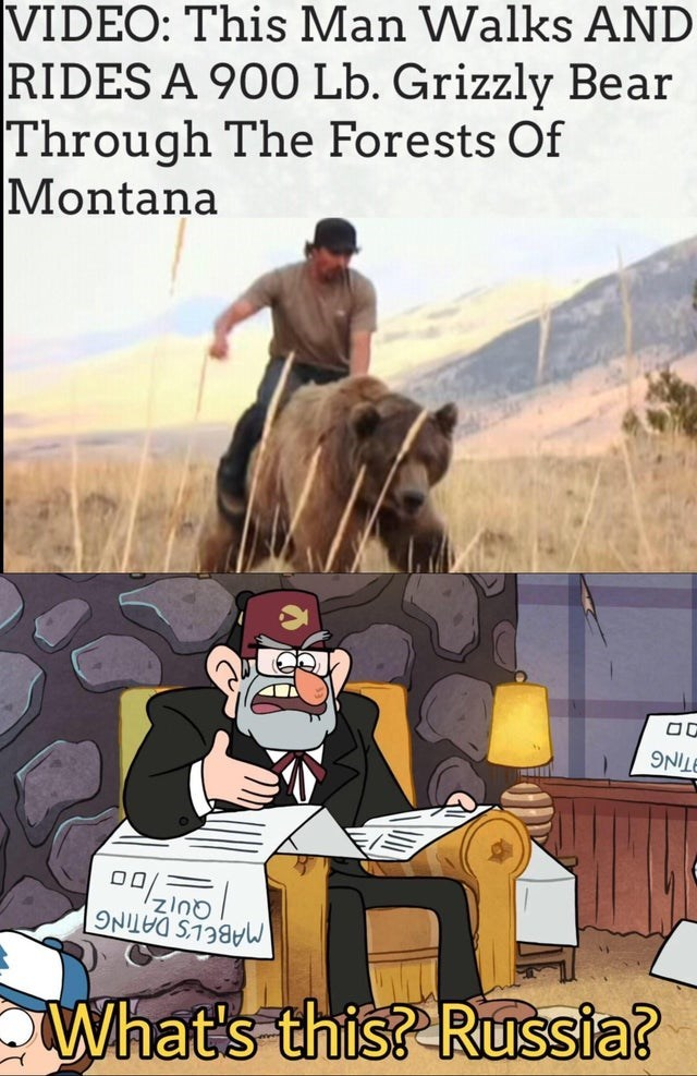 Cartoon - VIDEO: This Man Walks AND RIDES A 900 Lb. Grizzly Bear Through The Forests Of Montana 00 zIno MABEL'S DATING What's this? Russia?