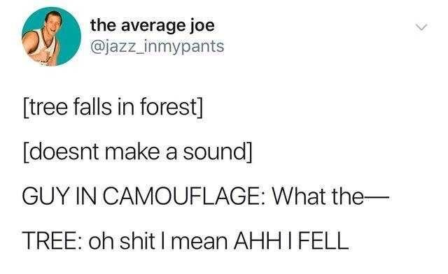 Text - the average joe @jazz inmypants [tree falls in forest] [doesnt make a sound] GUY IN CAMOUFLAGE: What the- TREE: oh shit I mean AHHI FELL