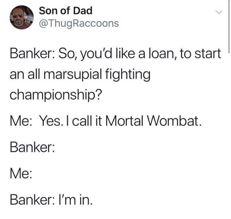 Text - Son of Dad @ThugRaccoons Banker: So, you'd like a loan, to start an all marsupial fighting championship? Me: Yes. I call it Mortal Wombat. Banker: Me: Banker: I'm in.