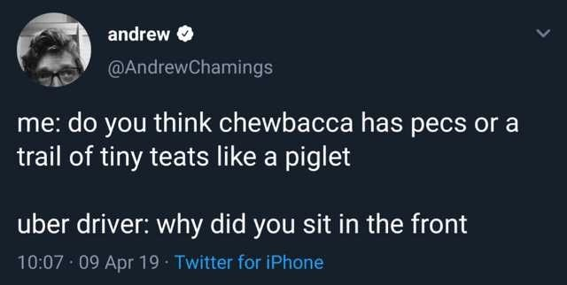 Text - andrew @AndrewChamings me: do you think chewbacca has pecs or a trail of tiny teats like a piglet uber driver: why did you sit in the front 10:07 09 Apr 19 Twitter for iPhone
