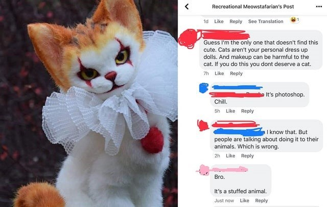 Cat - Recreational Meowstafarian's Post 1d Like Reply See Translation Guess I'm the only one that doesn't find this cute. Cats aren't your personal dress up dolls. And makeup can be harmful to the cat. If you do this you dont deserve a cat 7h Like Reply It's photoshop. Chill. 5h Like Reply I know that. But people are talking about doing it to their animals. Which is wrong. 2h Like Reply Bro. It's a stuffed animal. Like Reply Just now