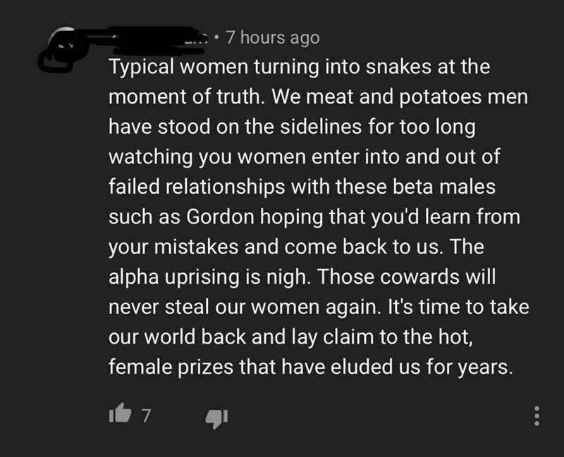 Text - 7 hours ago Typical women turning into snakes at the moment of truth. We meat and potatoes men have stood on the sidelines for too long watching you women enter into and out of failed relationships with these beta males such as Gordon hoping that you'd learn from your mistakes and come back to us. The alpha uprising is nigh. Those cowards will never steal our women again. It's time to take world back and lay claim to the hot, female prizes that have eluded us for years. 7