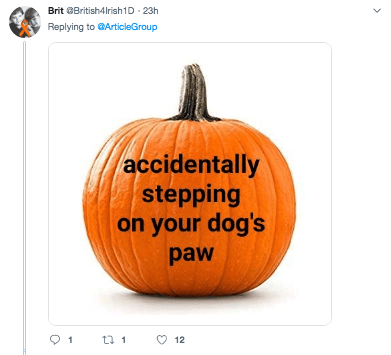 Pumpkin - Brit British4Irish1D 23h Replying toArticleGroup accidentally stepping on your dog's paw C2 12