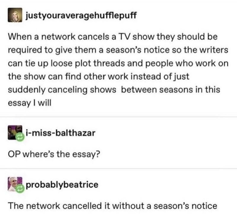 Text - justyouraveragehufflepuff When a network cancels a TV show they should be required to give them a season's notice so the writers can tie up loose plot threads and people who work on the show can find other work instead of just suddenly canceling shows between seasons in this essay I will i-miss-balthazar OP where's the essay? probablybeatrice The network cancelled it without a season's notice
