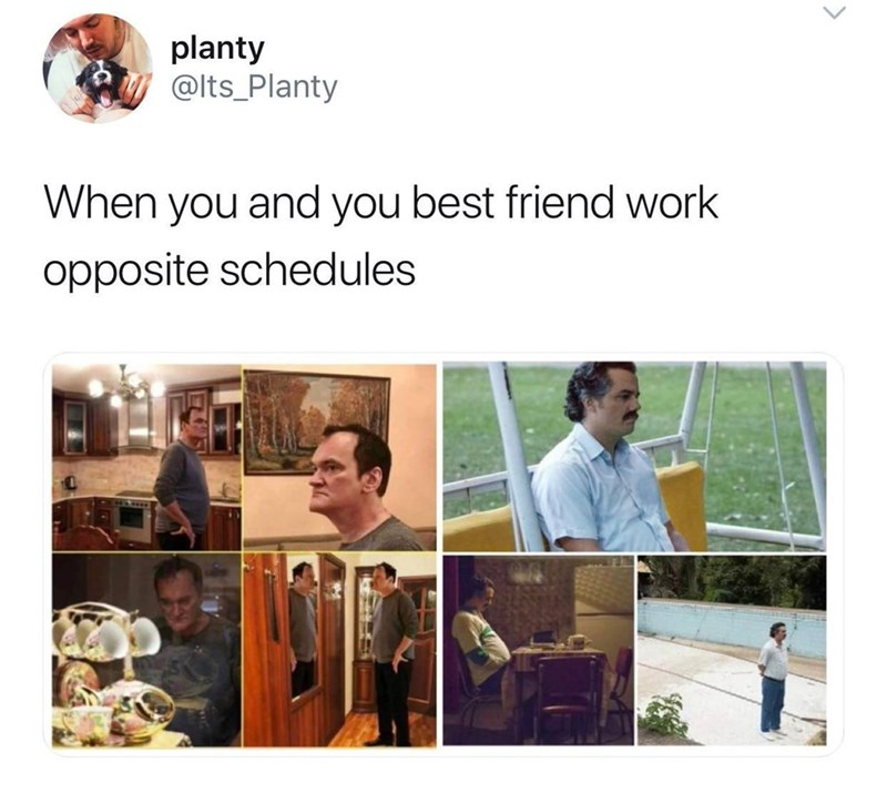 Product - planty @lts_Planty When you and you best friend work opposite schedules