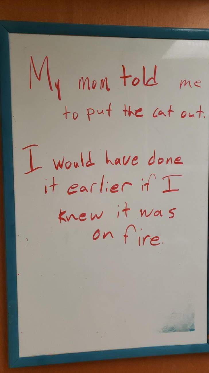 Text - My Mon told to put the cat out. me Would have done it earlier if I Knew it wa s fire On