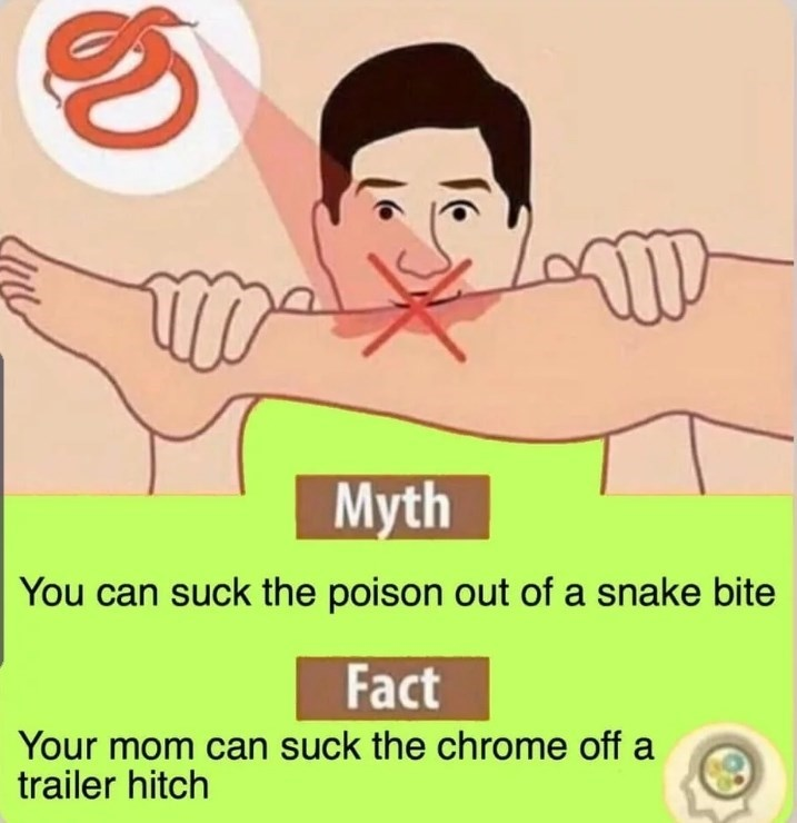 Face - Myth You can suck the poison out of a snake bite Fact Your mom can suck the chrome off a trailer hitch