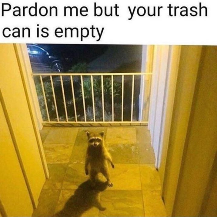 Yellow - Pardon me but your trash can is empty