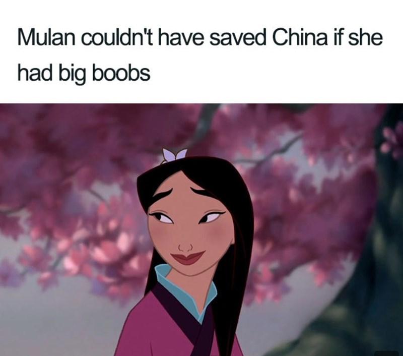 Cartoon - Mulan couldn't have saved China if she had big boobs