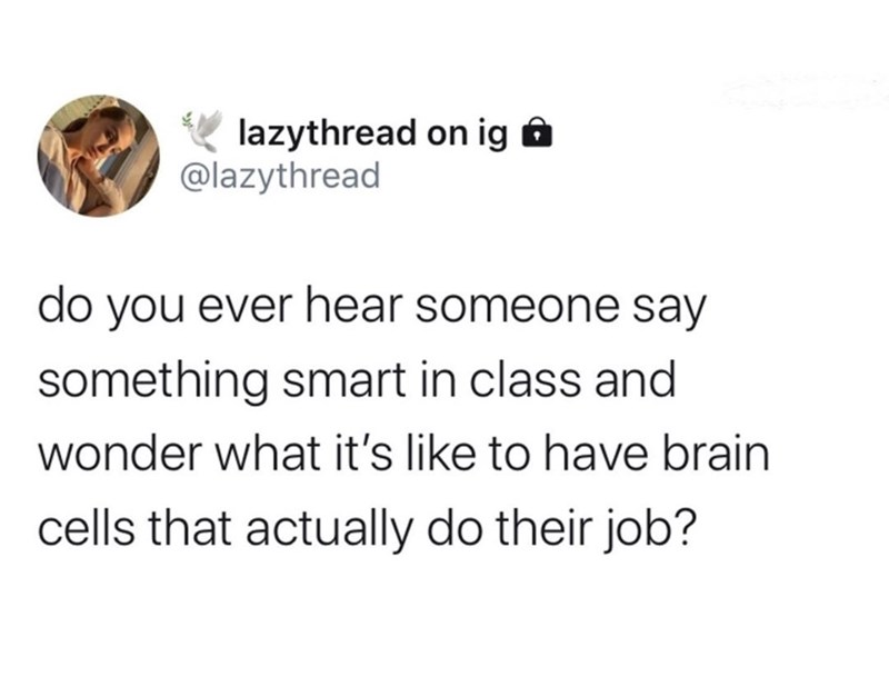 Text - lazythread on ig @lazythread do you ever hear someone say something smart in class and wonder what it's like to have brain cells that actually do their job?