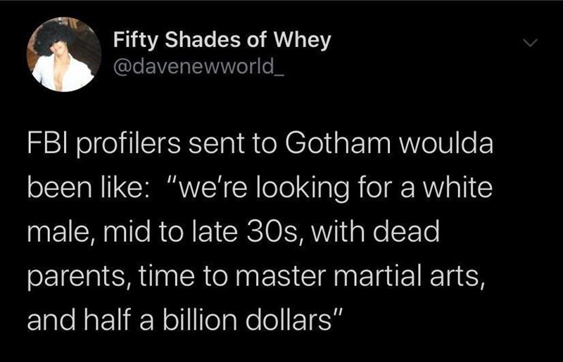 """Text - Fifty Shades of Whey @davenewworld FBI profilers sent to Gotham woulda been like: """"we're looking for a white male, mid to late 30s, with dead parents, time to master martial arts, and half a billion dollars"""""""