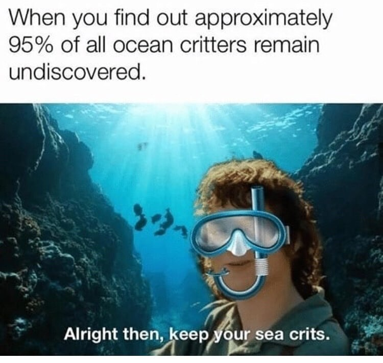 Organism - When you find out approximately 95% of all ocean critters remain undiscovered. Alright then, keep your sea crits.
