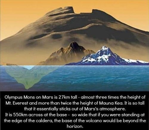 Nature - Olympus Mons on Mars is 27km tall - almost three times the height of Mt. Everest and more than twice the height of Mauna Kea. It is so tall that it essentially sticks out of Mars's atmosphere. It is 550km across at the base so wide that if you were standing at the edge of the caldera, the base of the volcano would be beyond the horizon.
