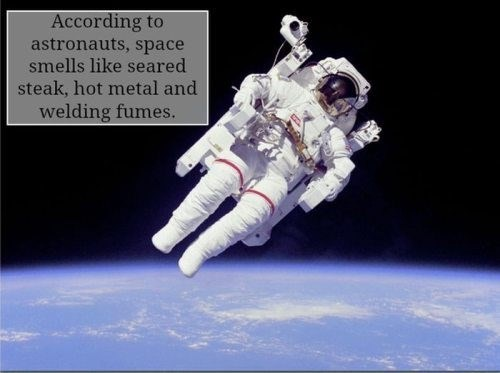 """Interesting space fact that reads, """"According to astronauts, space smells like seared steak, hot metal and welding fumes."""""""