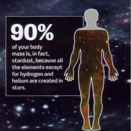 Joint - 90% of your body mass is, in fact, stardust, because all the elements except for hydrogen and helium are created in stars.