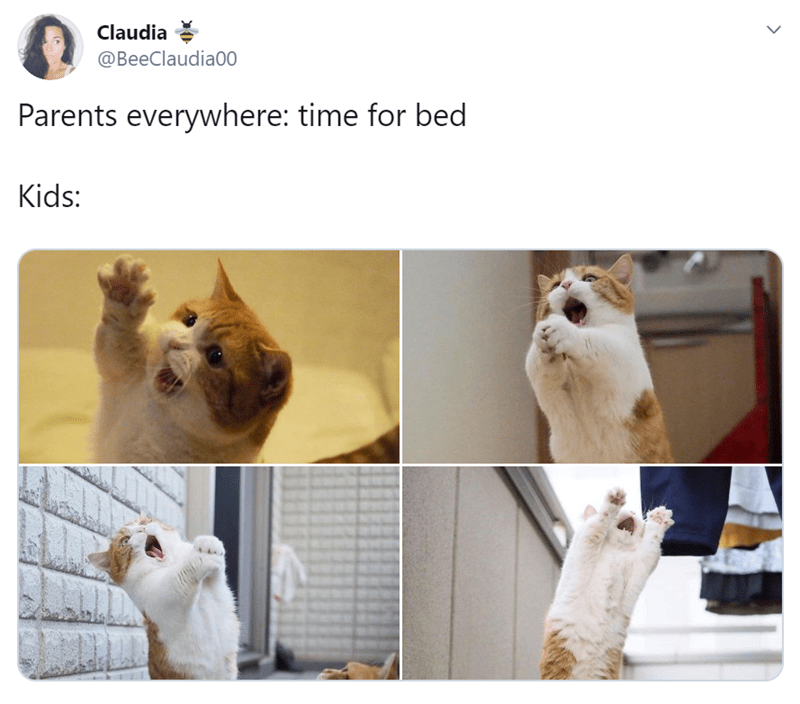 Cat - Claudia @BeeClaudia00 Parents everywhere: time for bed Kids: