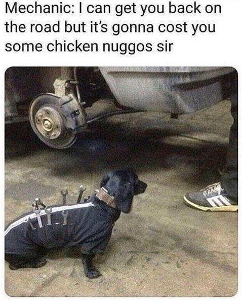 Dog - Mechanic: I can get you back on the road but it's gonna cost you some chicken nuggos sir
