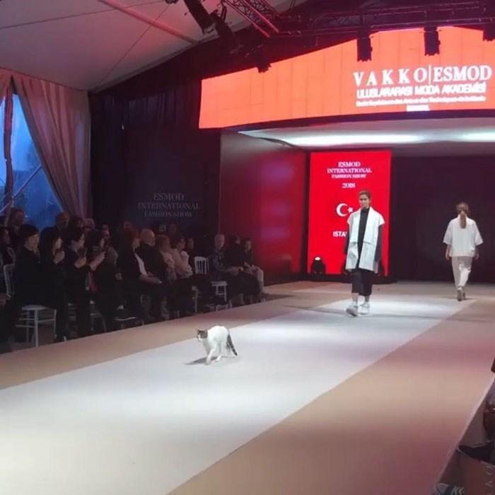 Fashion - VAKKO ESMOD UUBLARAA MODA AD ESMOD INTERNATIONAL ESMOD SONSIOW ISTA KK