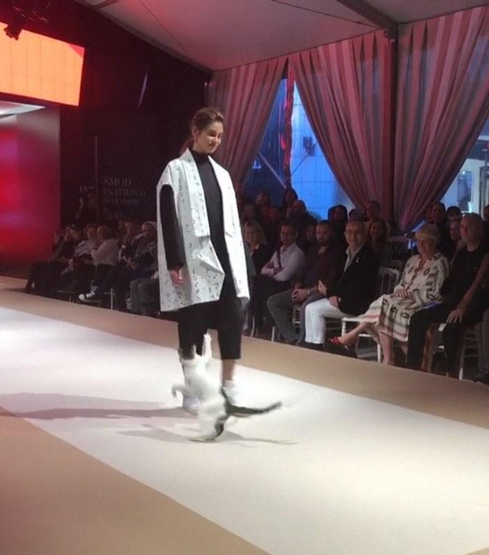 Fashion show - SMOD NATIONAL