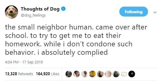 Text - Thoughts of Dog @dog feelings Following the small neighbor human. came over after school. to try to get me to eat their homework. while i don't condone such behavior. i absolutely complied 4:04 PM 17 Sep 2019 13,328 Retweets 164,920 Likes if