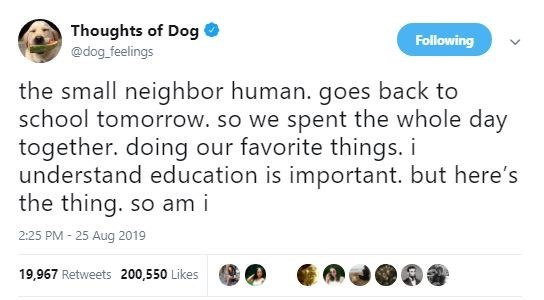 Text - Thoughts of Dog Following @dog feelings the small neighbor human. goes back to school tomorrow. so we spent the whole day together. doing our favorite things. i understand education is important. but here's the thing. so am i 2:25 PM 25 Aug 2019 19,967 Retweets 200,550 Likes