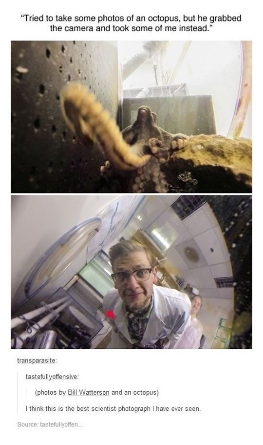 "Organism - ""Tried to take some photos of an octopus, but he grabbed the camera and took some of me instead. transparasite: tastefullyoffensive: (photos by Bill Watterson and an octopus) Ithink this is the best scientist photograph I have ever seen. Source: tastefullyoffe..."