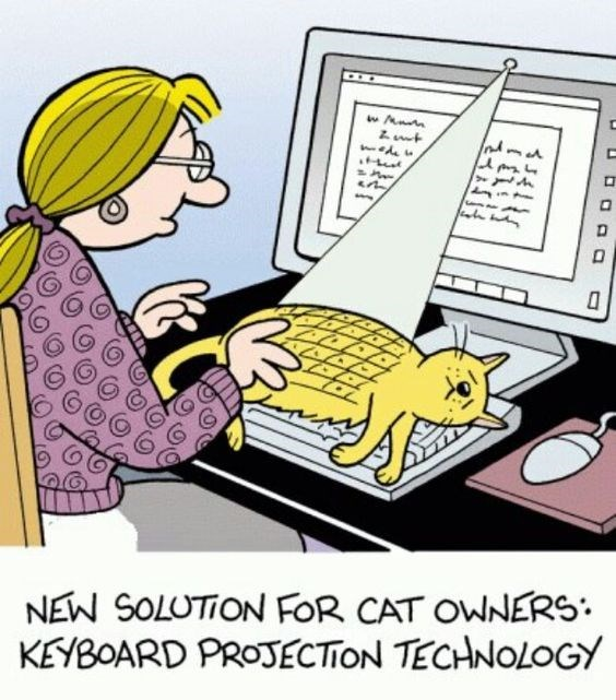 Cartoon - NEW SOLUTION FOR CAT OWNERS KEYBOARD PROJECTION TECHNOLOGY