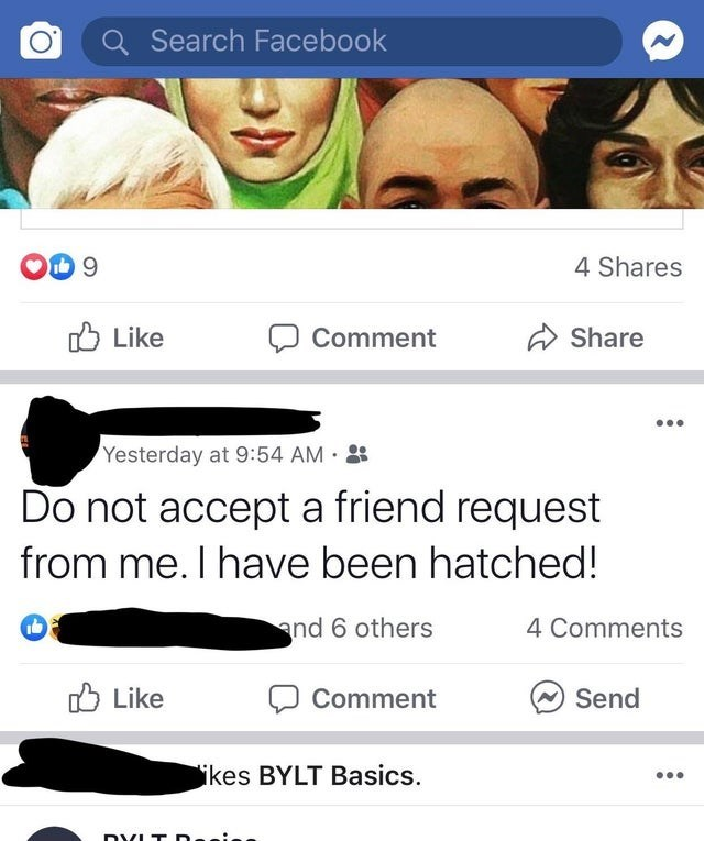 Face - Search Facebook 4 Shares Like Share Comment Yesterday at 9:54 AM Do not accept a friend request from me. I have been hatched! nd 6 others 4 Comments Like Send Comment ikes BYLT Basics. DYLT De.