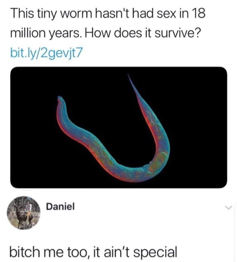 Line - This tiny worm hasn't had sex in 18 million years. How does it survive? bit.ly/2gevjt7 Daniel bitch me too, it ain't special