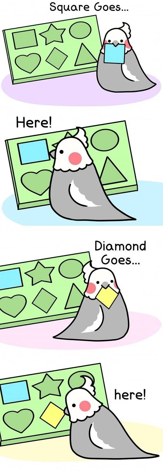 Cartoon - Square Goes... Here! Diamond Goes... here!