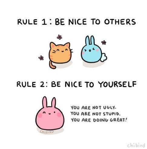 Text - RULE 1:BE NICE TO OTHERS RULE 2: BE NICE TO YOURSELF YoU ARE NOT UGLY YOU ARE NOT STUPID YOU ARE DOING GREAT CHIBIRD chibird