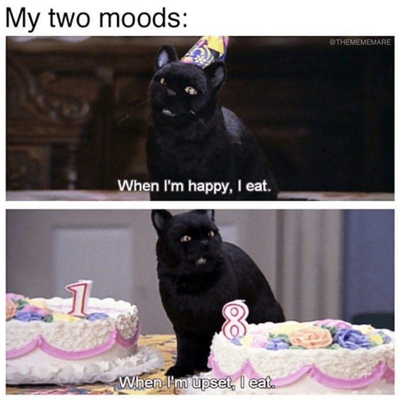 Black cat - My two moods: @THEMEMEMARE When I'm happy, I eat. When I'm upset, l eat.