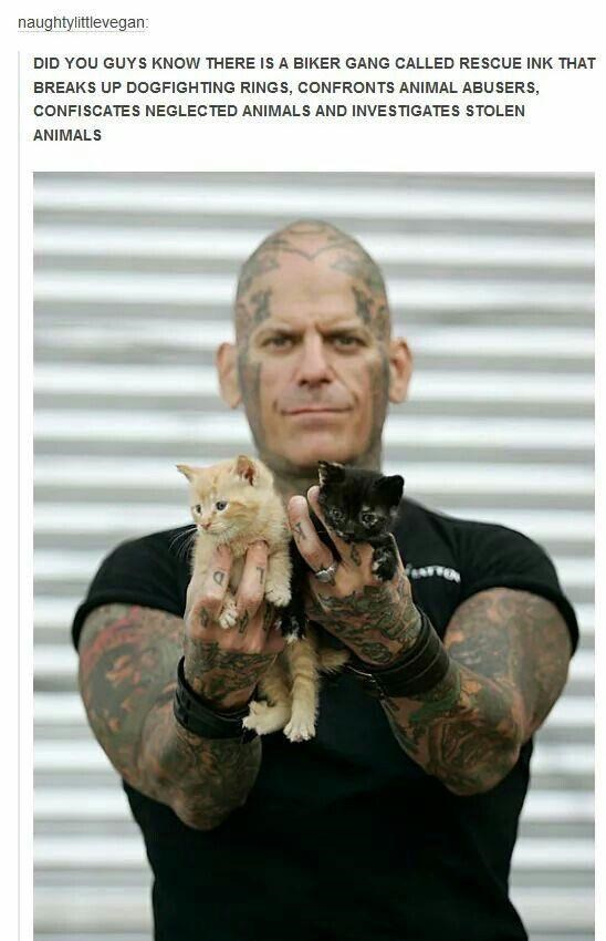 naughtylittlevegan: DID YOU GUYS KNOW THERE IS A BIKER GANG CALLED RESCUE INK THAT BREAKS UP DOGFIGHTING RINGS, CONFRONTS ANIMAL ABUSERS, CONFISCATES NEGLECTED ANIMALS AND INVESTIGATES STOLEN ANIMALS