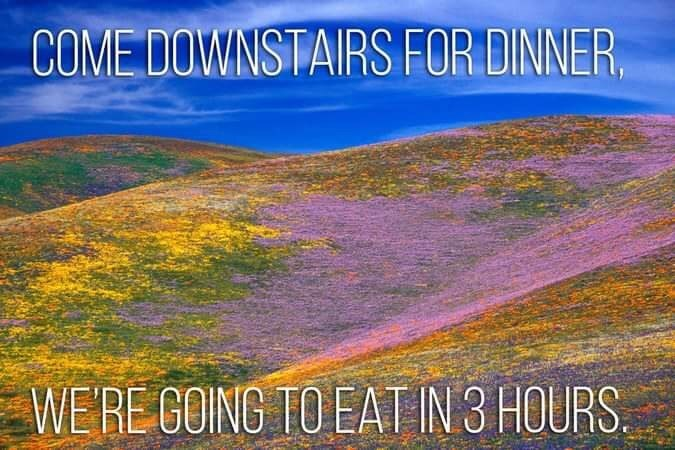 Natural landscape - COME DOWNSTAIRS FOR DINNER WERE GOING TO EAT IN 3 HOURS