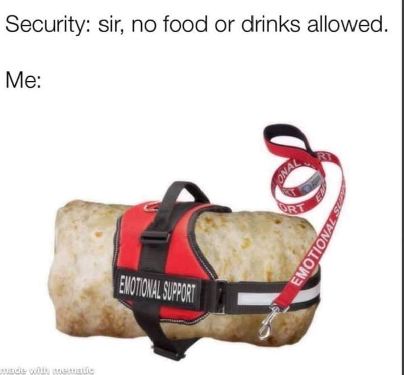 Bag - Security: sir, no food or drinks allowed. Me: RI ONAL ORT EMOTIONAL SUPPORT made with wemEtic EMOTIONAL